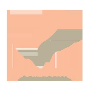 logo-ana-paula